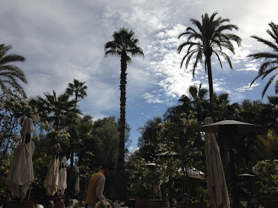 Marrakesh 486
